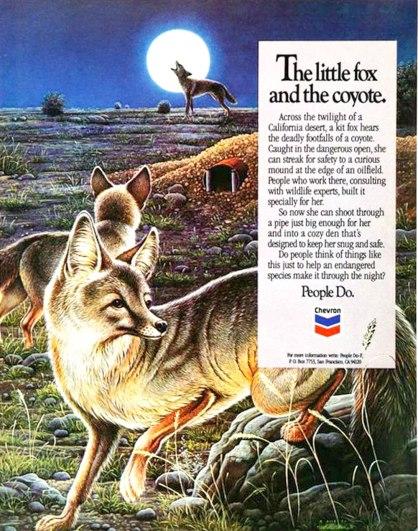Chevron Fox Ad