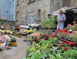 Gärtner, Dichter und Kaffee