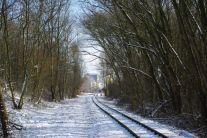 Aus der Feldbahn wird die Waldbahn