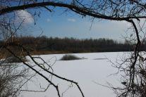 Inseln in den Seen
