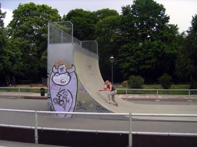 Skater-Kuh