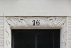 Vögel in der Hamburger Straße