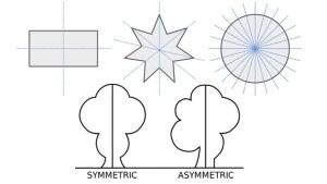 symmetrisch asymmetrisch