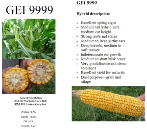 GEI 9999 Hybrid Description