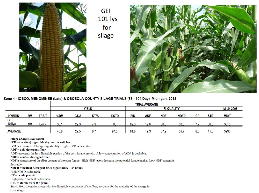 GEI 101 lys for Silage