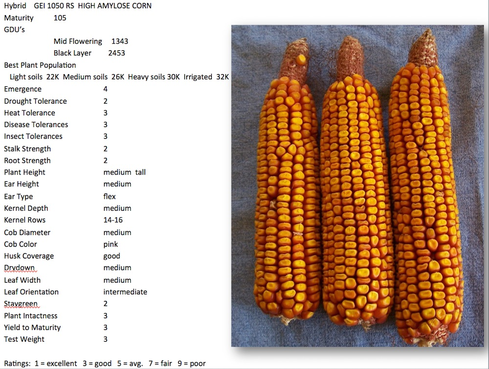 GEI 1050 RS High Amylose Corn