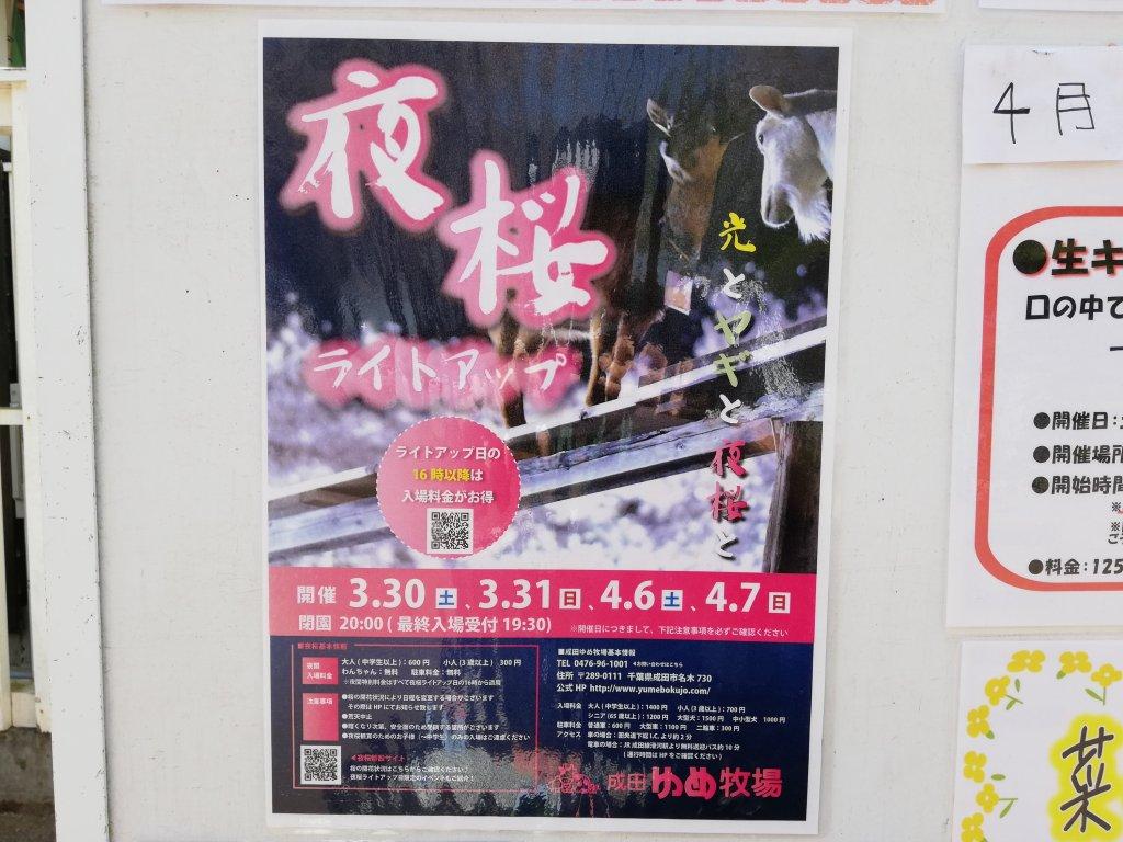 成田ゆめ牧場夜桜ポスター