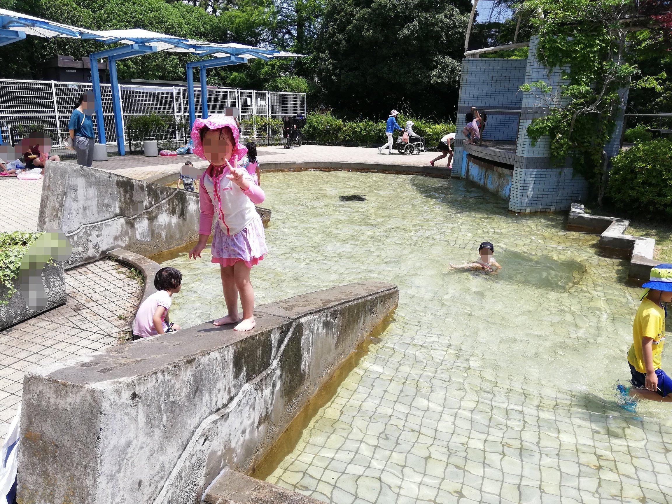 江戸川区新長島川親水公園のプールで遊ぶ子供たち