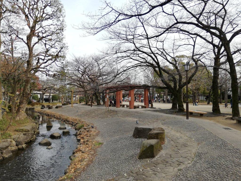 江戸川区の中央森林公園と隣接する小松川境川親水公園