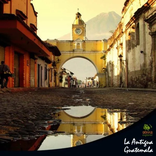 gekko-explorer-antigua-guatemala