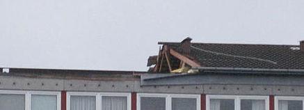 Stor stormskade i Skovgårdsparken