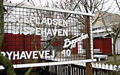 Kamphunde har fristed i Bispehaven