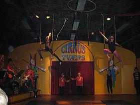 Sommer i cirkus