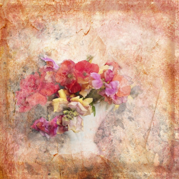Flowers - Square Illustrative composite photography by Deb Gartland