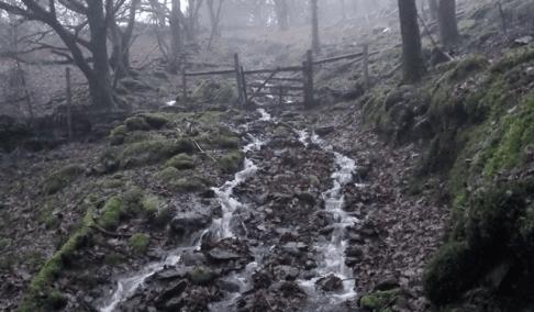 path-gate