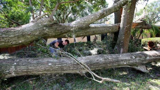 os-pictures-hurricane-irma-cleanup-in-orlando--173
