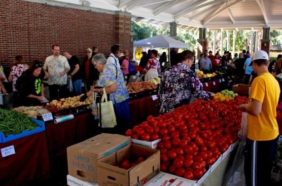 04-winter-garden-farmers-market-01