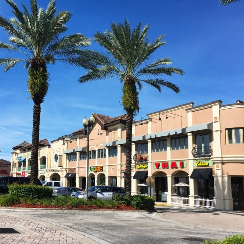 plaza-dr-phillips-orlando-fl (2)