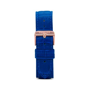 Blue Leather Gold Buckle Interchangeable Strap