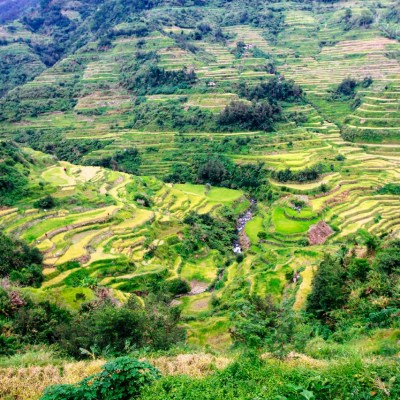 Banaue Rice Terraces August 2016 trip log