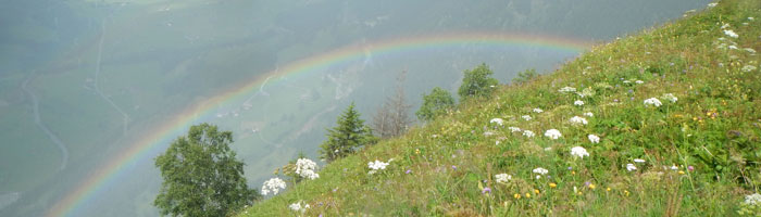 regenbogen_aktuell