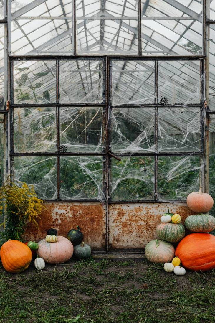 A glass window full of spider webs with loads of pumpkins in front of it.