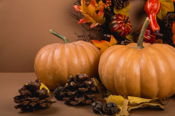 Pumpkins surrounded by decorations of nature such as pine cones and autumn red and yellow leaves