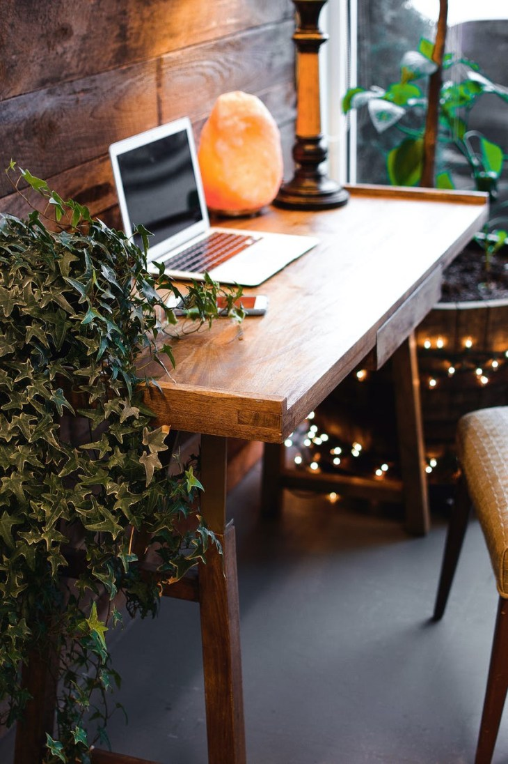 A wooden table with a grey laptop on it. There are plants either side and a giant stone crystal