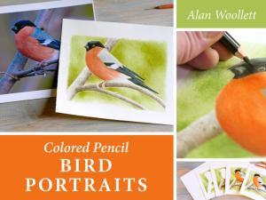 """Colored Pencil Bird Portraits"" by Alan Woollett"