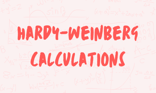 Hardy-weinberg-calculations-a-level-biology