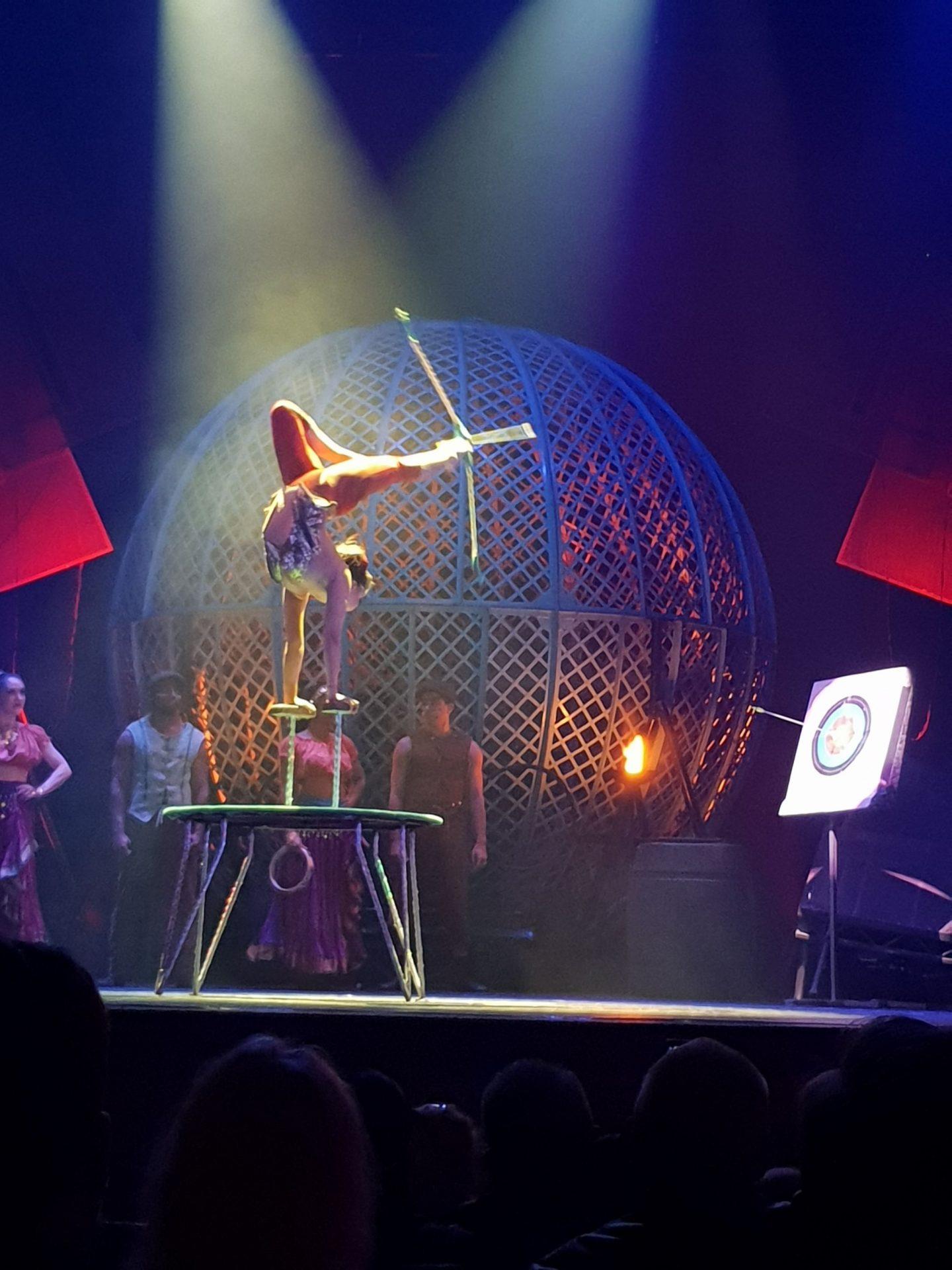 20180621 204909 1440x1920 - The Toon Has Gone Cirque Berserk!