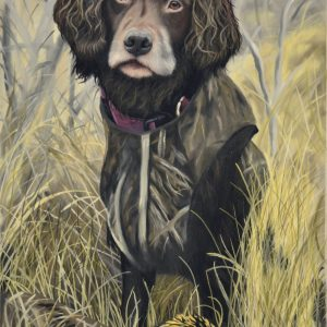 hunting dog portrait