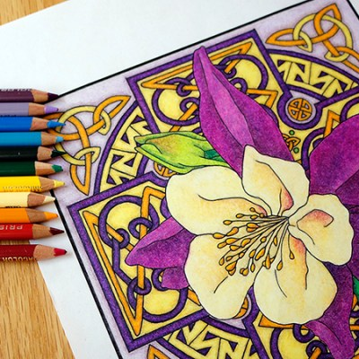 Colored Pencil For Adult Coloring Books Workshop December 11th