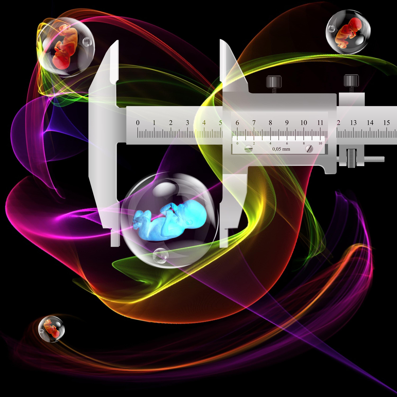 Ultrasound Safety In Pregnancy