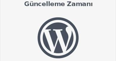 Localhost'ta Kurulu WordPress güncellemesi