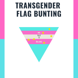 Show Your Support With Transgnder Flag Bunting