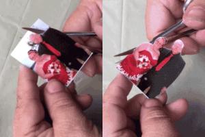 Carefully cut around your photograph