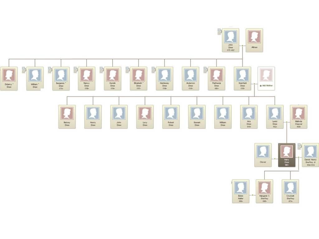 The free African American Drew family tree (Virginia)