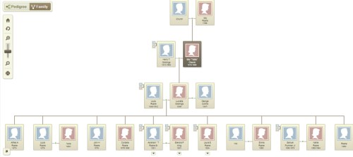 Ibby Church family tree