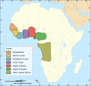 African DNA