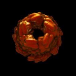 flower_round_a2