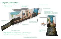 algae-collab-proposal-v5
