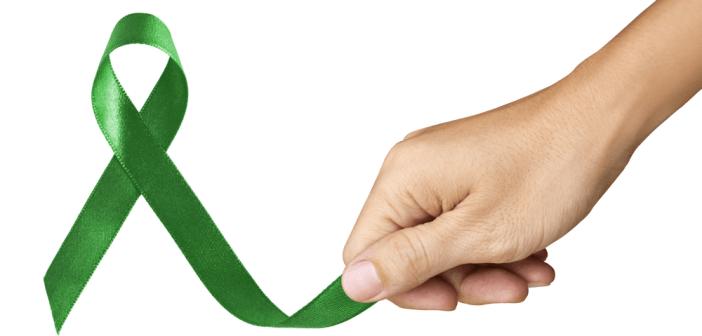 韓柏檉抗肝癌重生的啟示