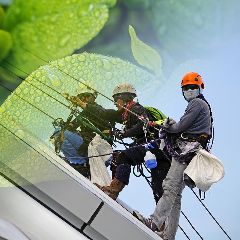 Medi Ambient, Qualitat i Prevenció de Riscos Laborals