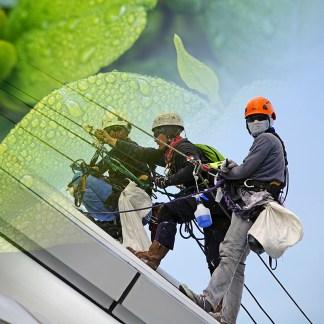 Medio Ambiente, Calidad y Prevención de Riesgos Laborales
