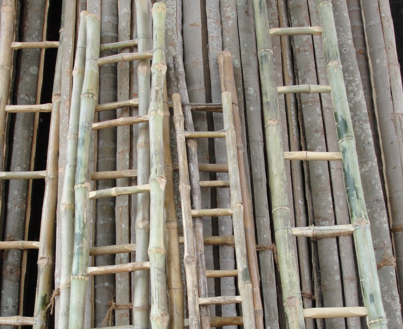 A selection of bamboo ladders