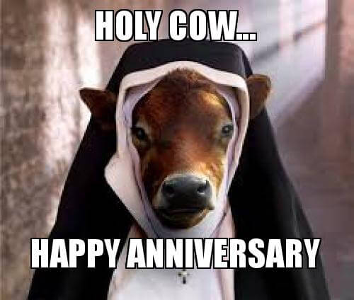 Happy Anniversary Funny Meme To Start Their Day With Smiles