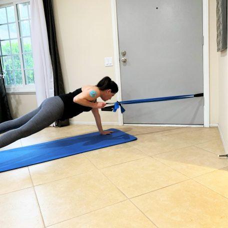 Plank Row Exercise