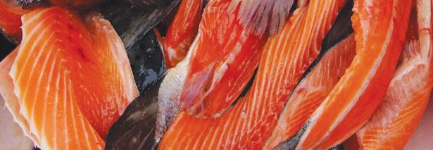 Generations Magazine - August-September 2016 - Salmon-Oil_image1