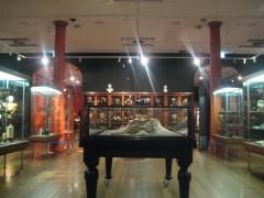 Nicholson Museum, Sydney